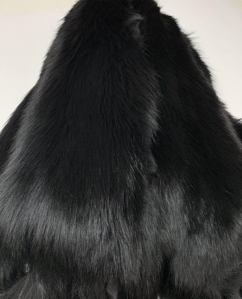 Енот крашенный в чёрный