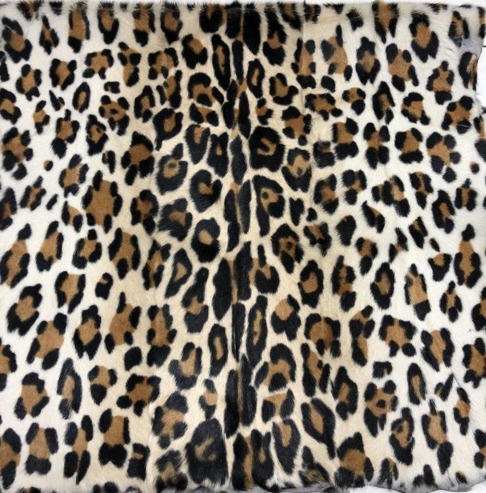 Леопард4