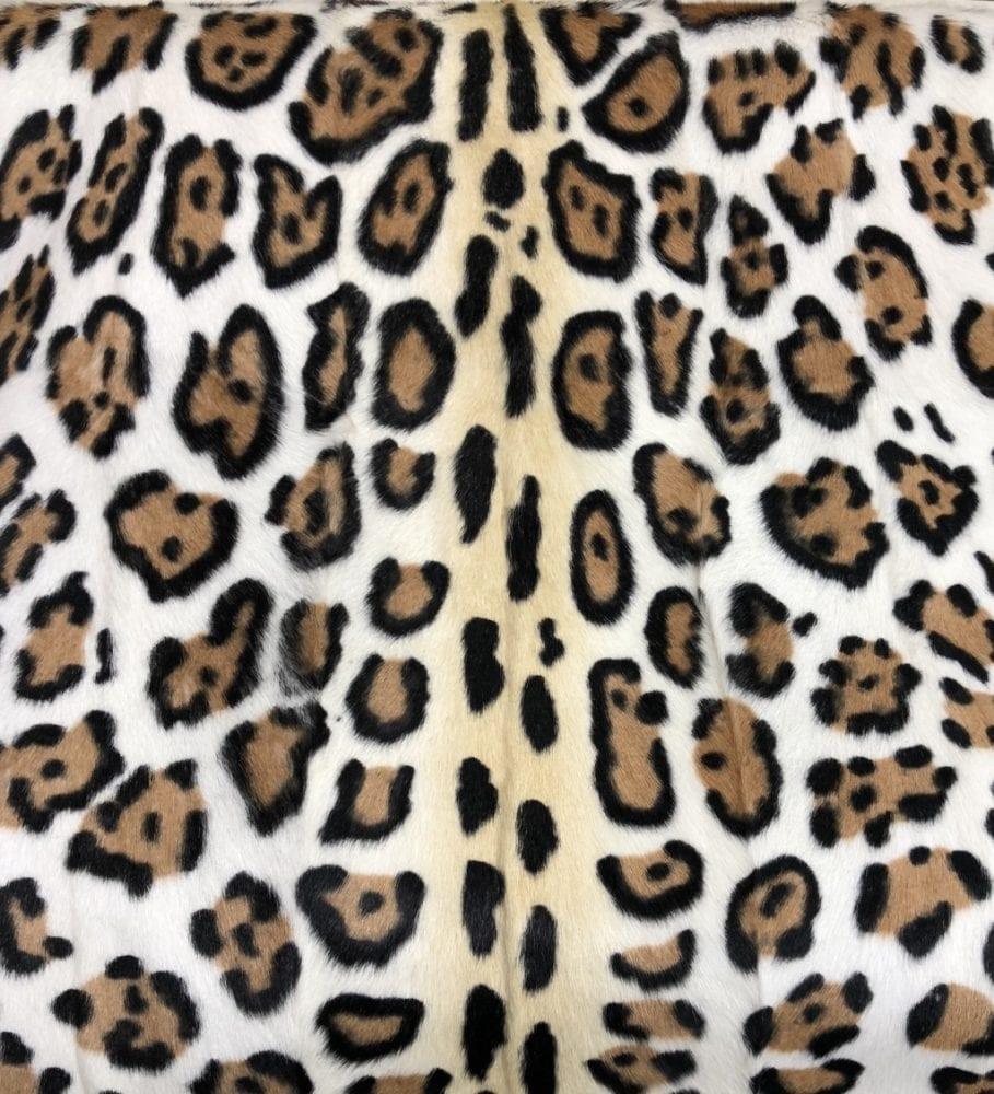 Леопард5