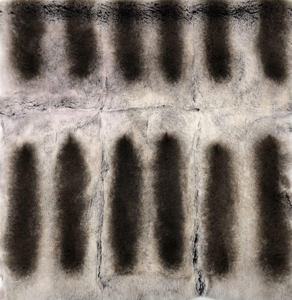 Пластины кролика рекс под шиншиллу бело черная