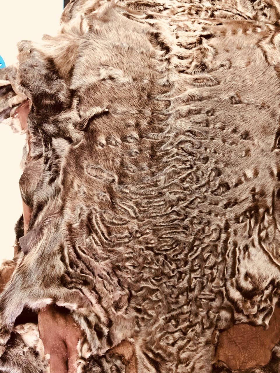 Мех каракуля сур коричневый